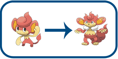 fire stone evolution