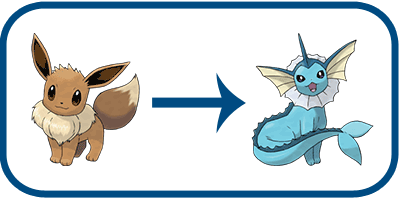 water stone evolution