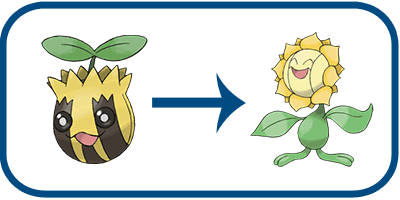 grass type sunkern evolution