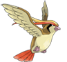 Pidgeot icon